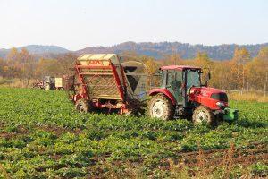 11月の農作業 ~いよいよ冬がやってきます